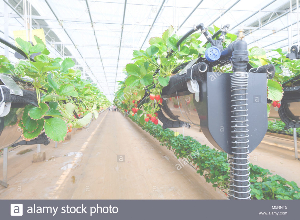 Amazing Chiangmai, Thailand - February 12 : Smart Agriculture Technology throughout Vertical Farming Technology