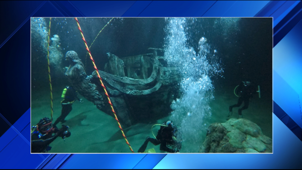 Amazing Moody Gardens Reveals First Glimpse At Caribbean Exhibit for Moody Gardens Exhibits Aquarium Pyramid South Atlantic Exhibit