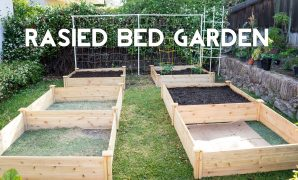 Amazing Raised Bed Gardening - How To Start A Garden With Raised Beds - Youtube regarding Review How To Start A Garden In Your Backyard