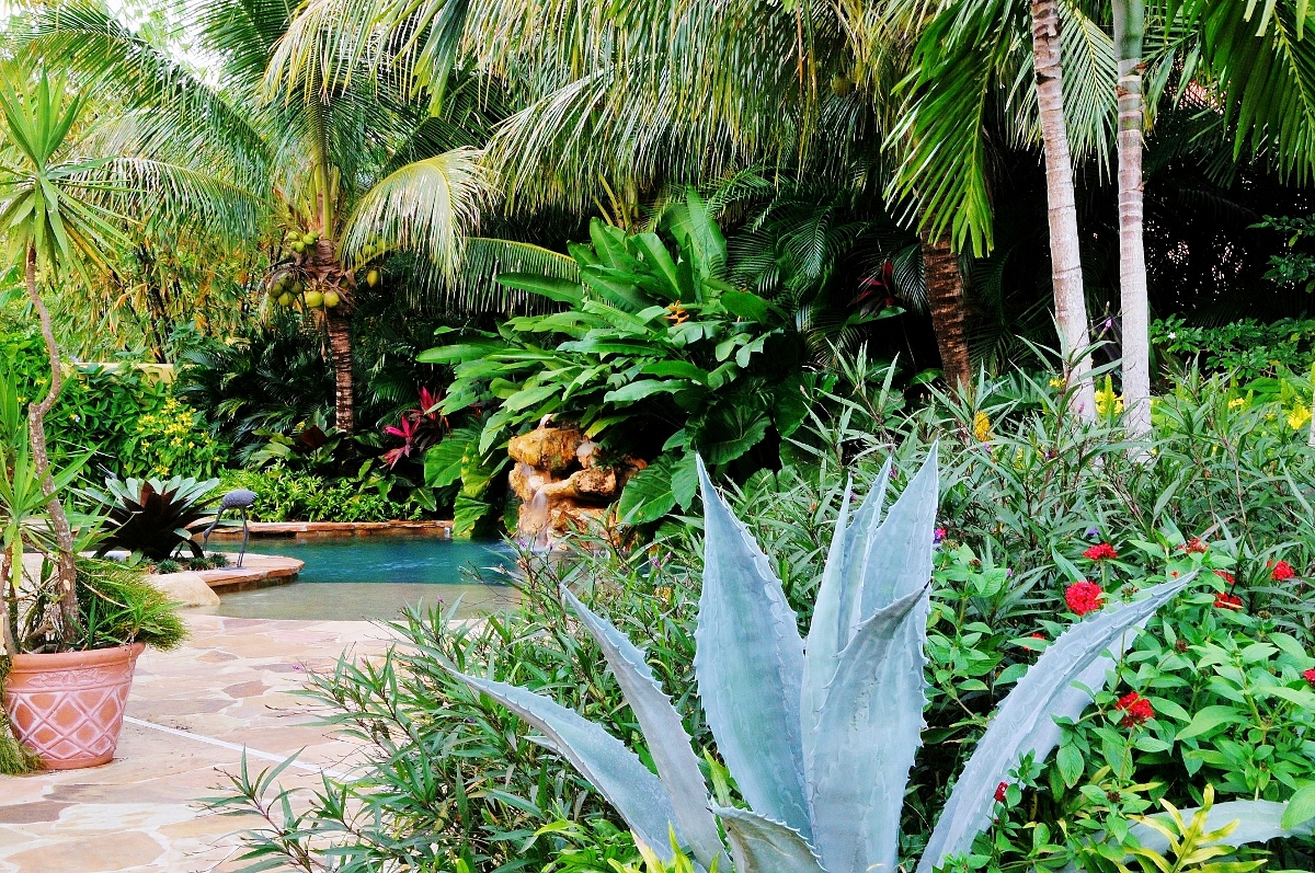 Amazing Tropical Landscape Garden Design Miami- Knoll Landscape intended for Landscape Design Garden