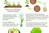 Beautiful Best Home And Garden Tips | Pinterest | Plants, Urban Gardening And with regard to New Benefits Of Urban Gardening