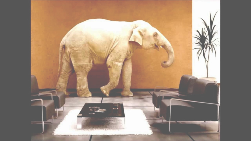 Beautiful Fresh Elephant In The Living Room Decoration - Best Living Room in Luxury The Elephant In The Living Room