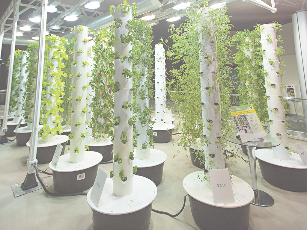 Beautiful Vertical Farming Is Going To Feed Us All – The New Economy inside Inspirational Vertical Farming Technology
