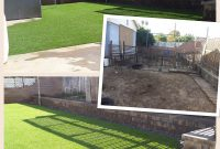 Beautiful What A Transformation From Muddy Backyard To A Dog Friendly Backyard intended for Dog Friendly Backyard