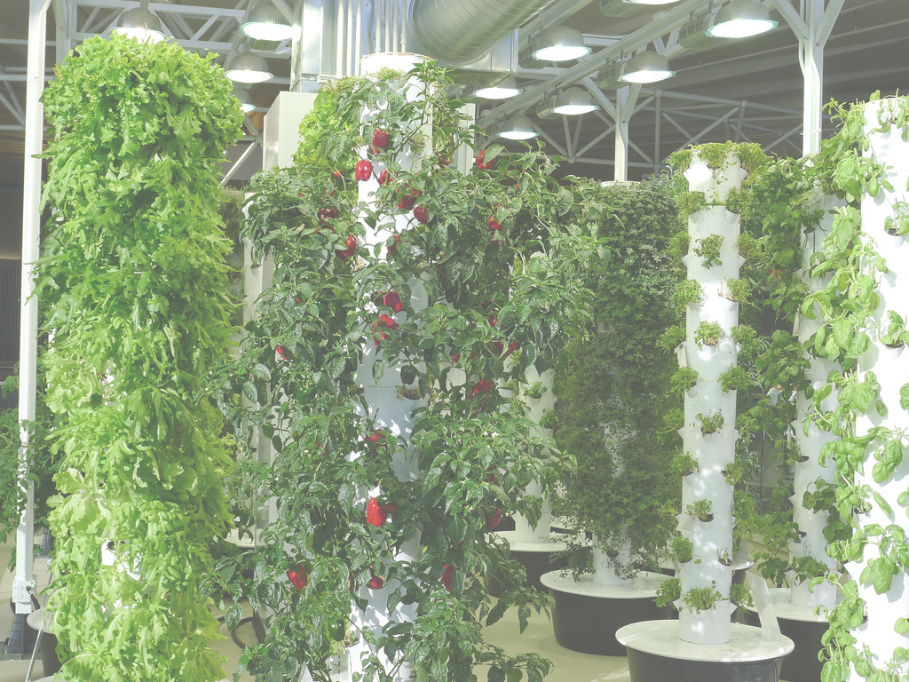 Cool 10 Online Platforms Helping Future Indoor Farmers - Agfundernews inside Inspirational Vertical Farming Technology