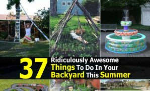 Cool 37 Ridiculously Awesome Things To Do In Your Backyard This Summer inside New Things To Do In Your Backyard
