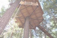 Cool Easy Treehouse Plans Free Treehouse Floor Plans Homepeek – Bibserver with Inspirational Easy Treehouse Plans Free