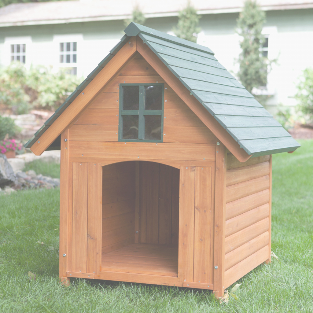 Cool Igloo Dog House Lowes Beautiful Insulated Dog Houses Lowes Beautiful pertaining to Luxury Igloo Dog House Lowes