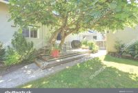 Cool Typical American Backyard Small Old Craftsman Stock Photo (Royalty with American Backyard