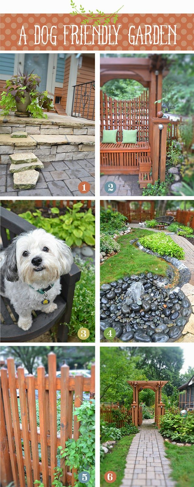 Elite 171 Best Dog Friendly Garden Ideas Images On Pinterest | Backyard intended for High Quality Dog Friendly Backyard