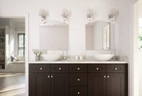 Elite Dark Chocolate Shaker – Ready To Assemble Bathroom Vanities with Dark Bathroom Vanity