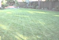 Elite How To Landscape A Big Backyard : Landscaping & Garden Design – Youtube within Fresh Big Backyard Ideas
