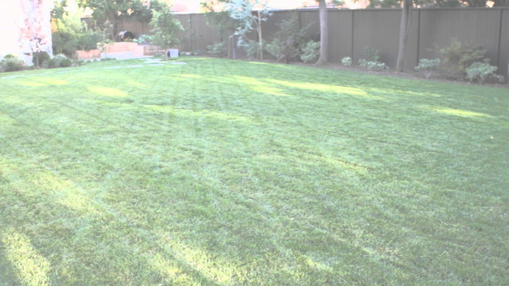 Elite How To Landscape A Big Backyard : Landscaping & Garden Design - Youtube within Fresh Big Backyard Ideas