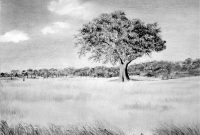 Elite Landscape Drawing Ideas Giclee Prints – Western, Equine, Pets And for High Quality Landscape Drawing Ideas