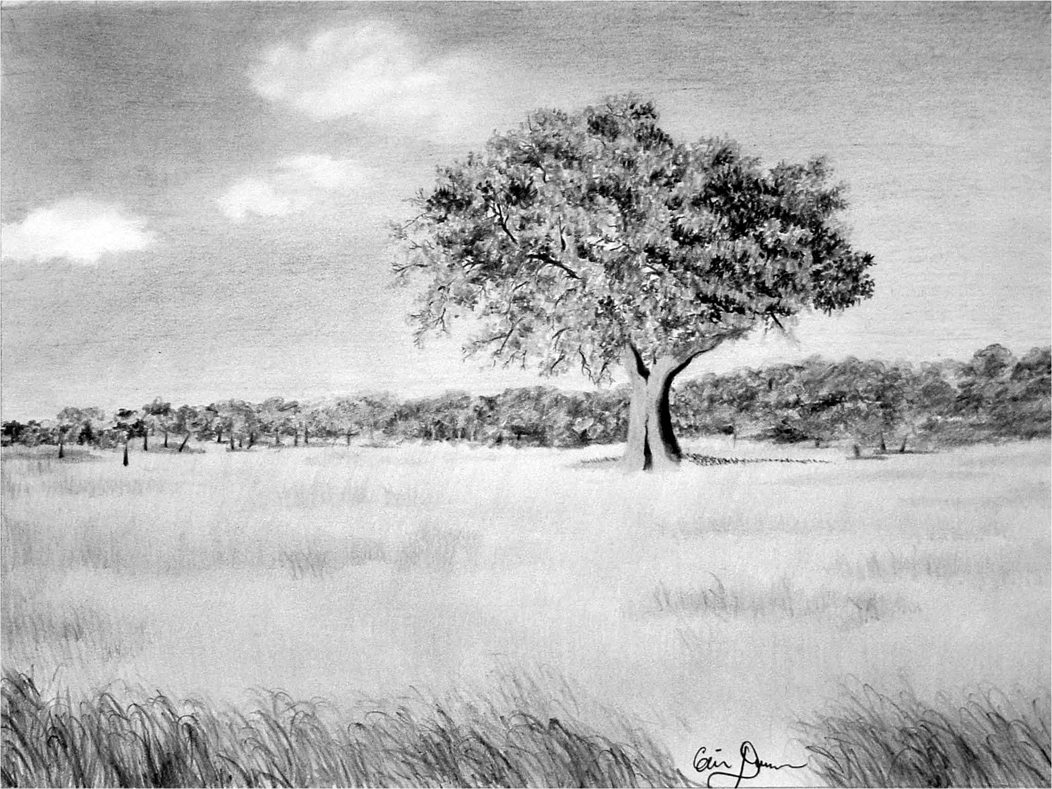 Elite Landscape Drawing Ideas Giclee Prints - Western, Equine, Pets And for High Quality Landscape Drawing Ideas