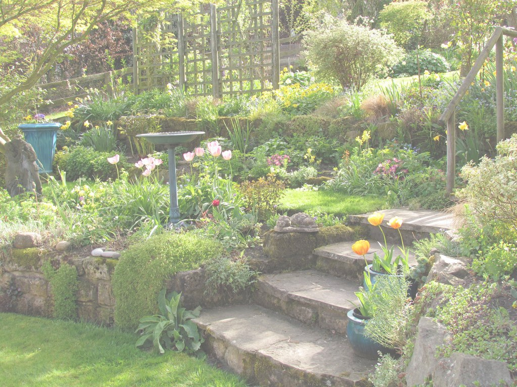 Elite Lovely Terraced Garden. A Little Smaller Scale In Our Yard Could pertaining to Best of Terraced Backyard