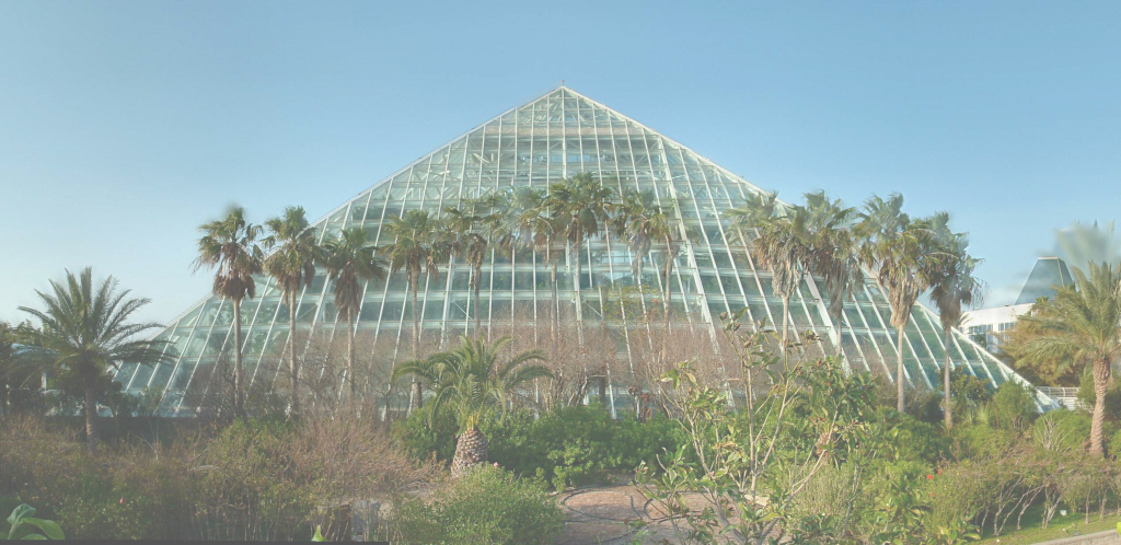 Elite Moody Gardens, Galveston, Texas, Usa | Cruisebe in Unique Moody Gardens Exhibits Aquarium Pyramid South Atlantic Exhibit