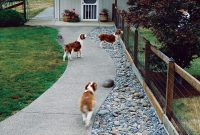 Elite Pet Friendly Backyard Ideas Tips For Dogscaping Your Backyard for Dog Friendly Backyard