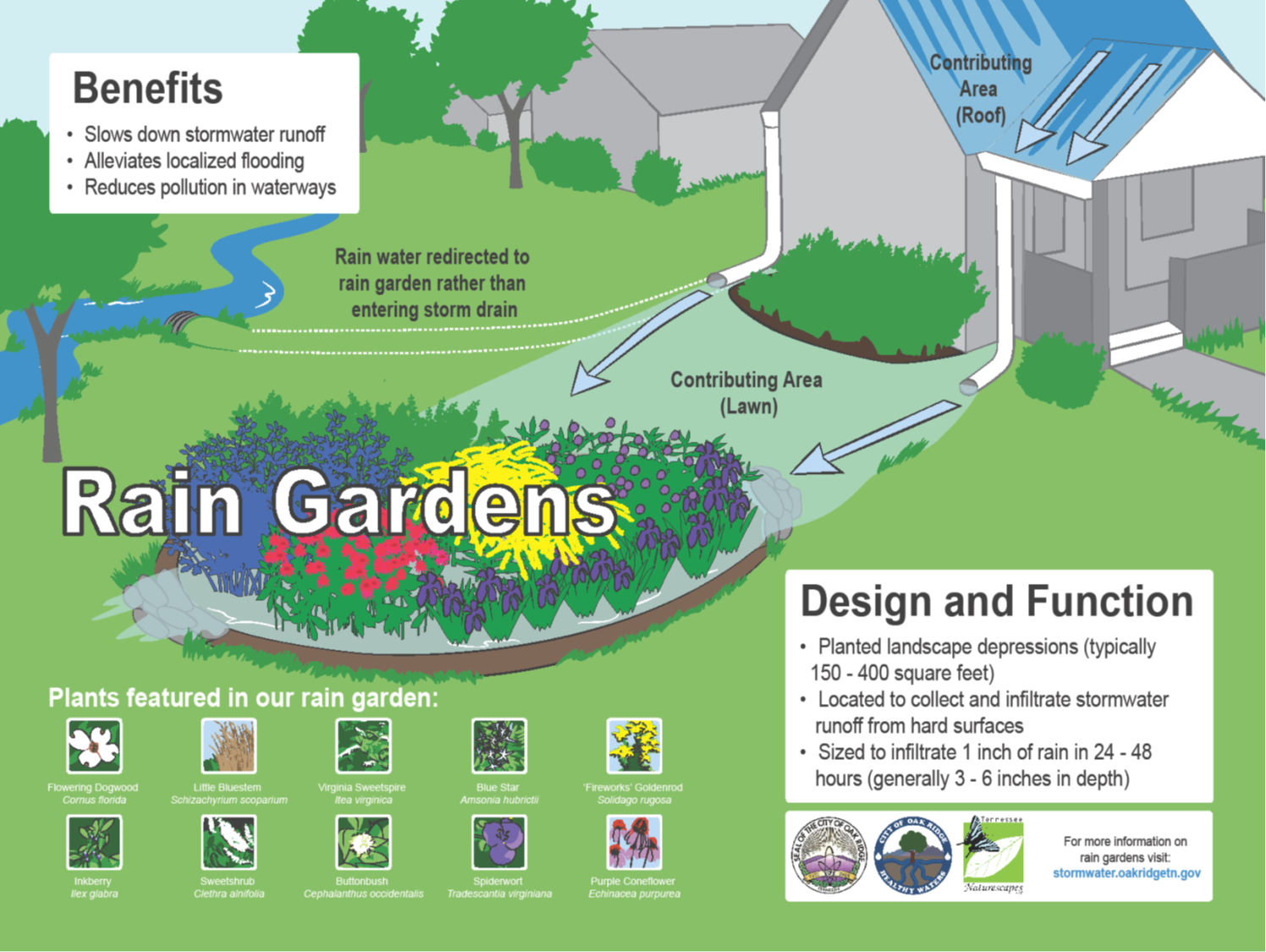 Epic City Of Oak Ridge Stormwater » Oak Ridge Rain Gardens for New Benefits Of Urban Gardening