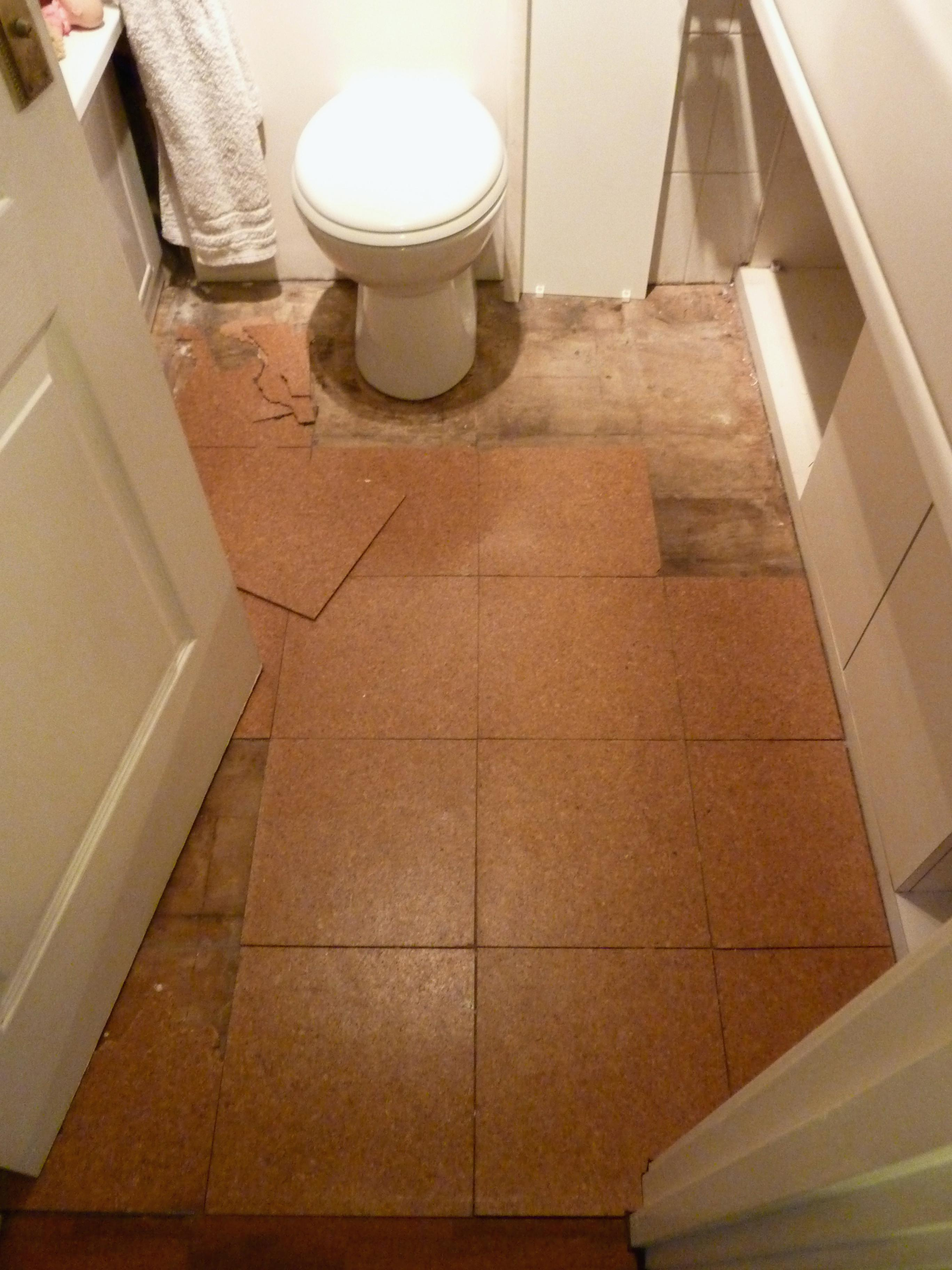 Epic Cork Flooring For Bathroom In Bathrooms And Kitchens Pros Cons for Cork Flooring Bathroom