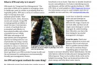 Epic Ipm: Smart Pest Management For The Vegetable Garden | Msu Extension intended for Vegetable Garden Pests Identification