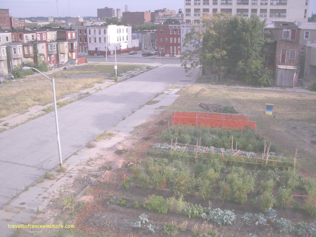 Epic Urban Gardening Philadelphia Lovely What Is Urban Agriculture for What Is Urban Gardening