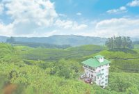 Fabulous Hotel Emerald Inn, Munnar – Trivago.in throughout High Quality Hotel Elysium Garden Munnar