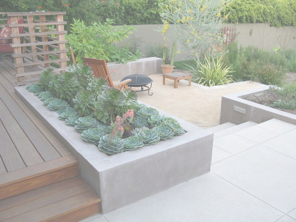 Fabulous Palm Springs Patio Designs For Large Backyards | Desert Backyard throughout Big Backyard Ideas