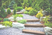 Fabulous Plants For A Japanese Garden | The Tree Center™ for Japanese Landscape Design
