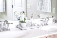 Fancy Bathroom Counter Storage & Complete Ideas Example for Bathroom Counter Storage Ideas