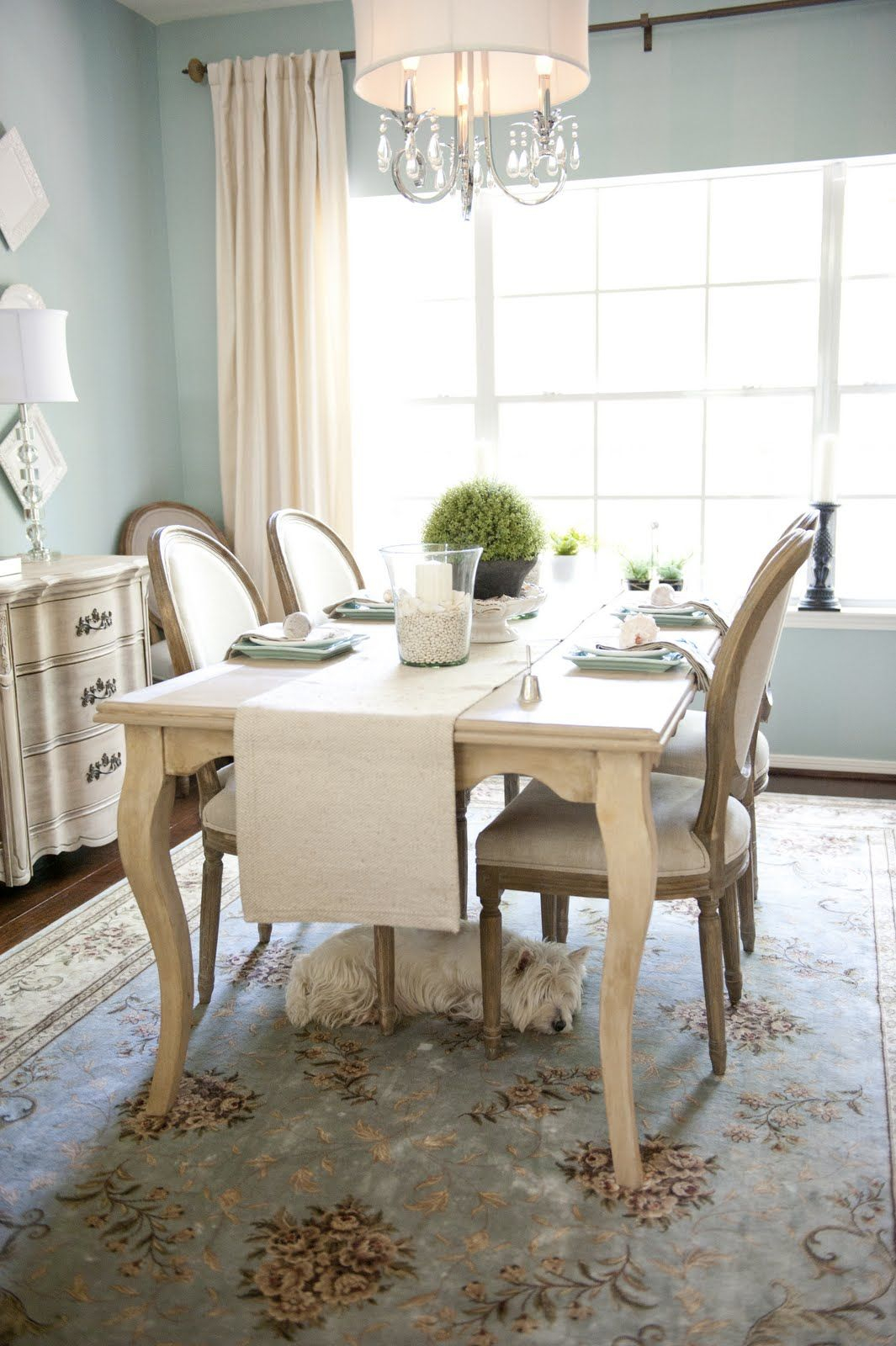 Glamorous Beautiful Kitchen Space. Especially Love The Westie Under The Table inside Review Light Blue Dining Room