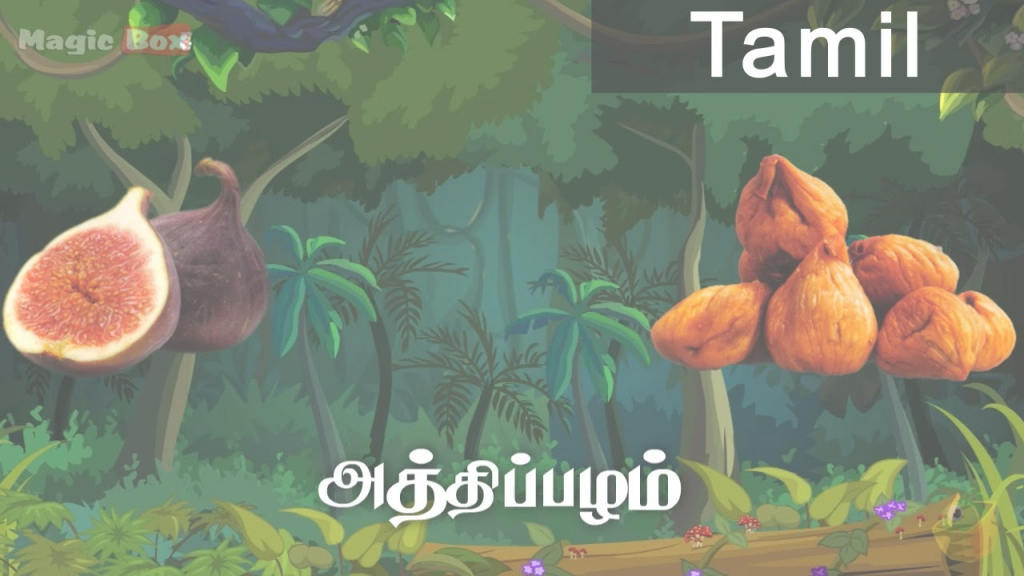 Glamorous Fig - Fruits In Tamil - Pre School Animated Educational Videos For inside Best of Landscape Meaning In Tamil