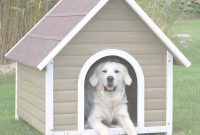 Glamorous Igloo Dog House Lowes Lowes Igloo Dog Houses Amusing Dog House Plans in Luxury Igloo Dog House Lowes