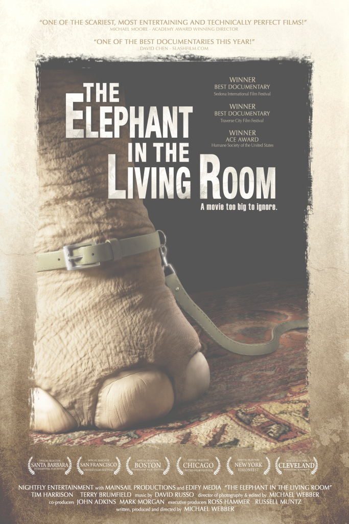 "Glamorous The Elephant In The Living Room"" Opens Friday For 1 Week – Sentient in The Elephant In The Living Room"