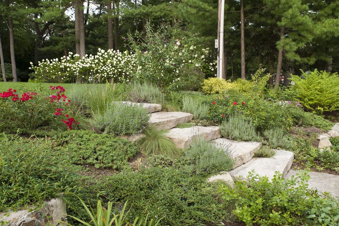 Inspirational Front Yard Landscape Design Archives - Terrascapes Archive | Terrascapes within Yard Landscape Pictures