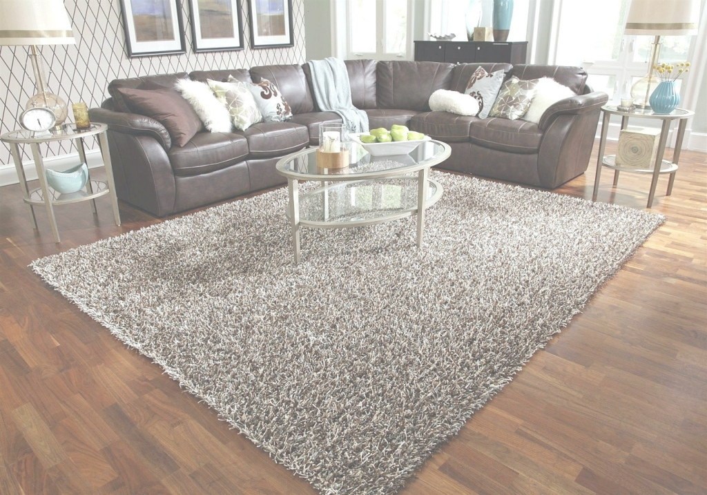 Lovely Shaggy Rugs For Living Room Plush Area Rugs 8×10 Living Room Carpet within Elegant Soft Area Rugs For Living Room