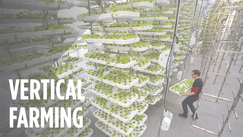 Lovely This Farm Of The Future Uses No Soil And 95% Less Water - Youtube regarding Vertical Farming Technology