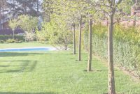 Lovely Well-Groomed Lawn With Pool On Backyard Of Country House In Spring for Country Backyard