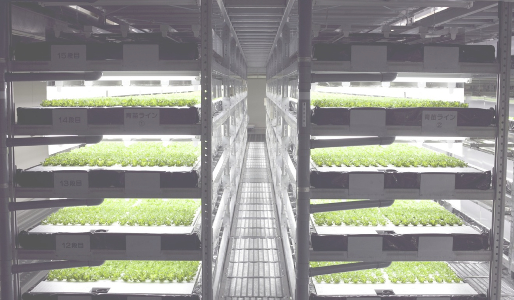 Modern The Future Of Farming: Japan Goes Vertical And Moves Indoors | Style with regard to Vertical Farming Technology