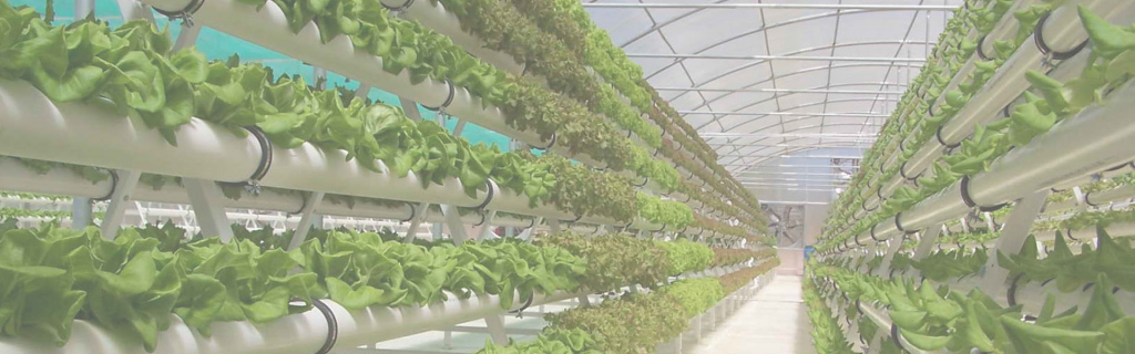 Modern Utopian Technology Foundation regarding Inspirational Vertical Farming Technology