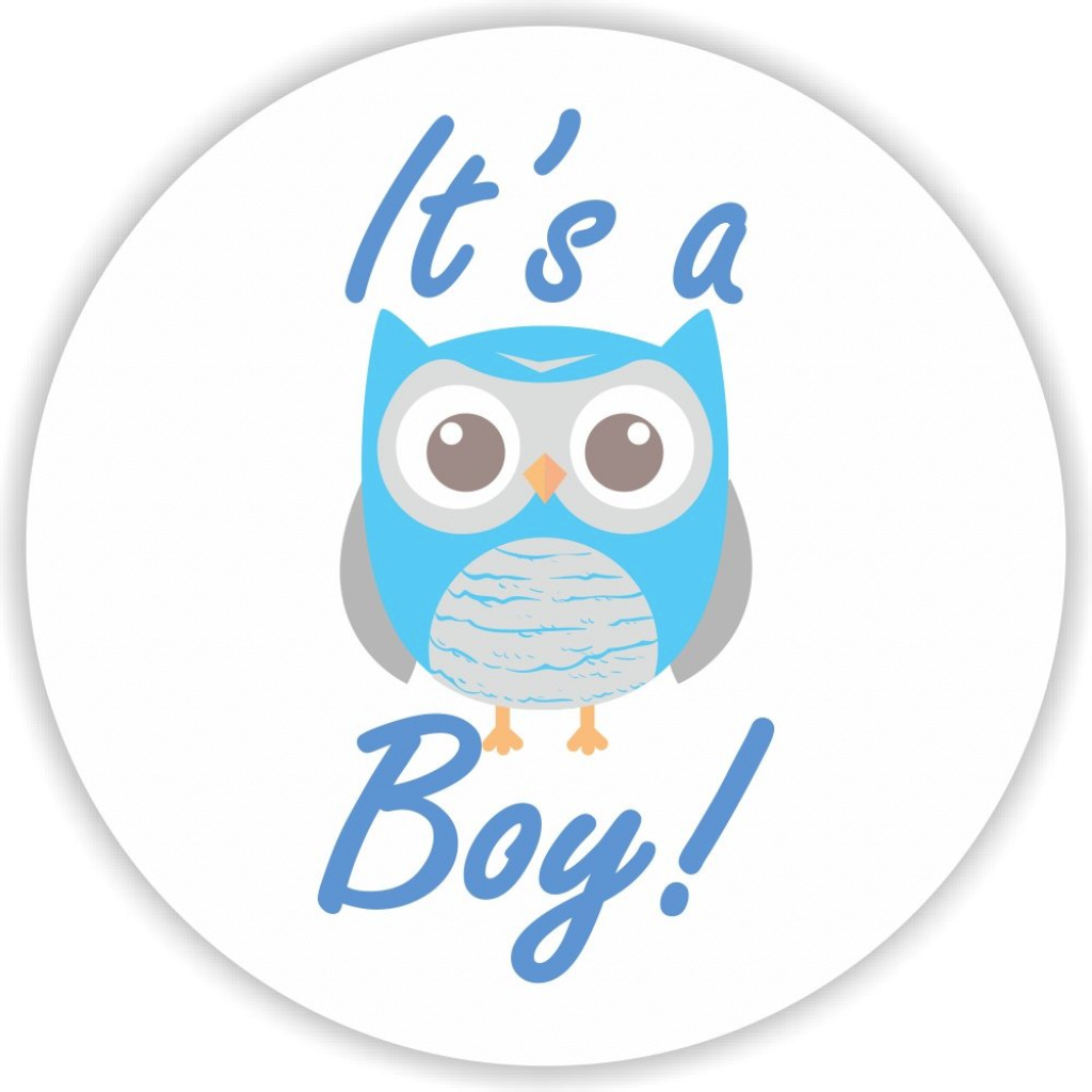 Modular 108 It's A Boy Owl Stickers Labels Baby Shower Party Favors Kisses with regard to Luxury Baby Shower Its A Boy