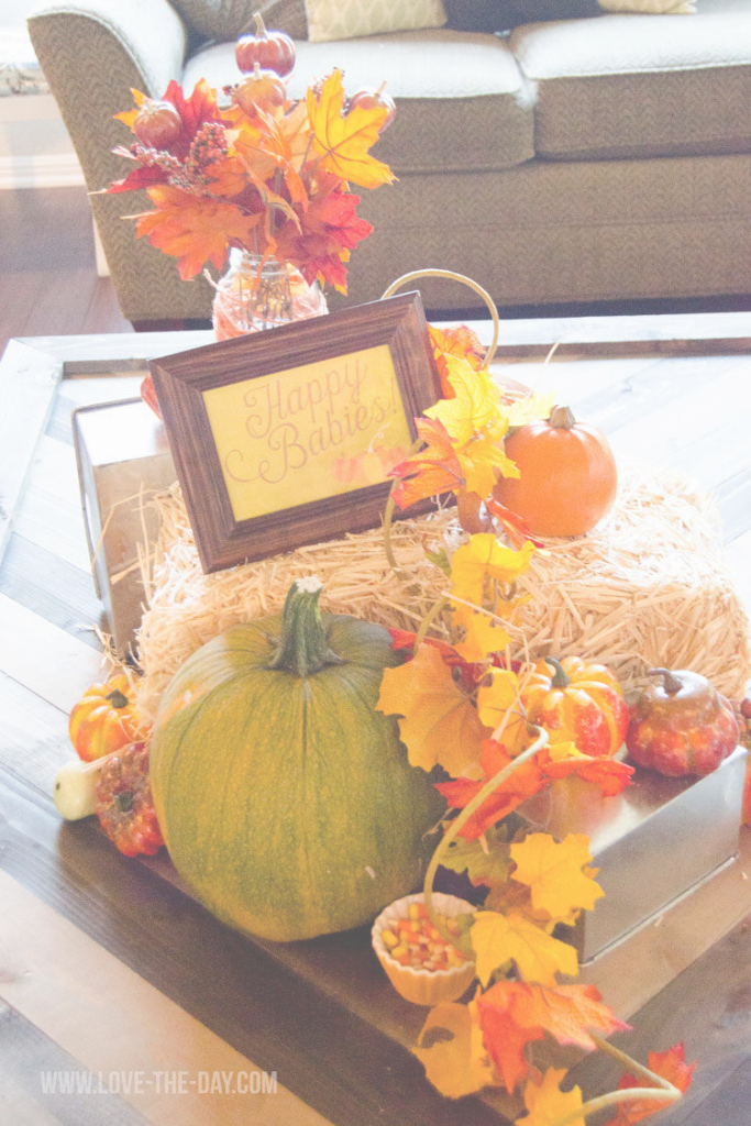 Modular Fall Baby Shower Decorating Ideas - Homemade Party Design with Fall Baby Shower