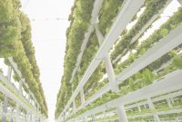 Modular Feeding The Future Of Agriculture With Vertical Farming with Vertical Farming Technology