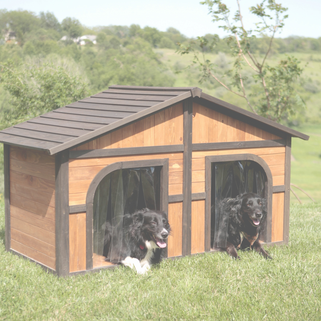 Modular Igloo Dog House Lowes Elegant Ideas Attractive Dog Houses Walmart intended for Luxury Igloo Dog House Lowes