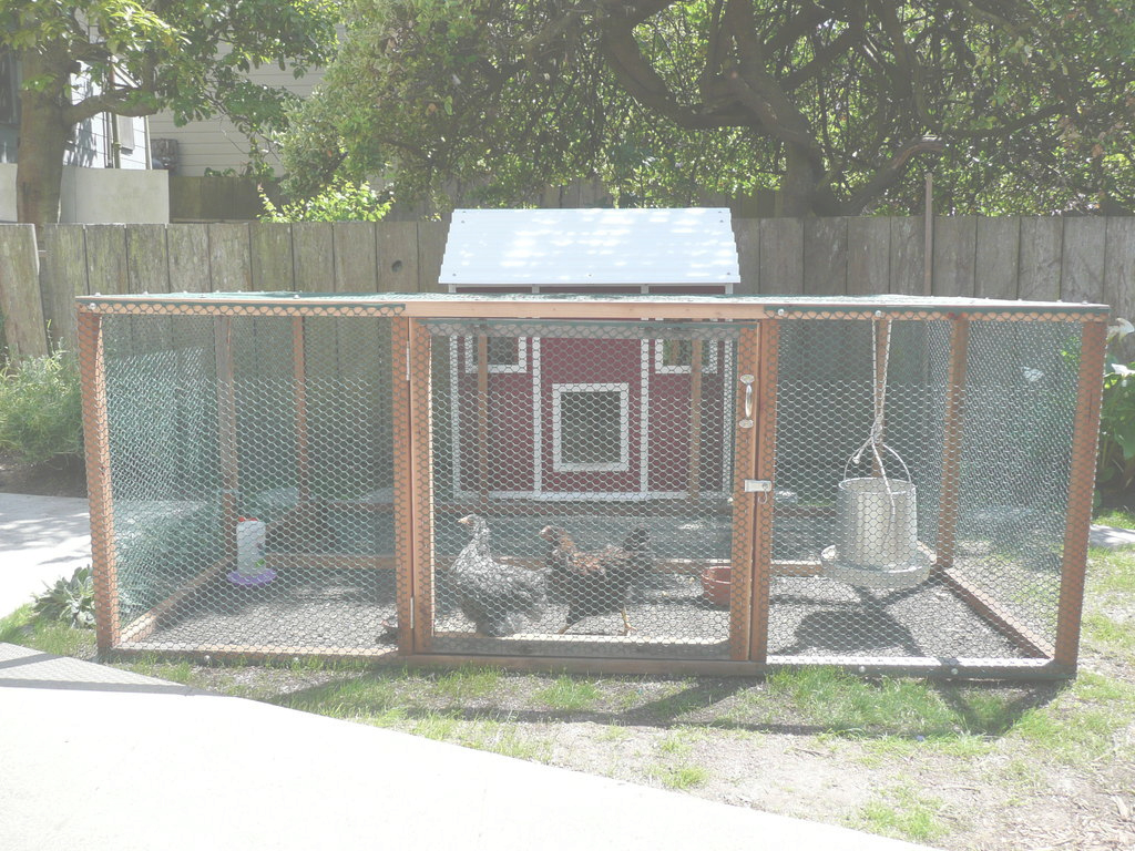 Modular Urban Farming: Raising Backyard Chickens: 3 Steps (With Pictures) intended for High Quality Backyard Chicken Farming
