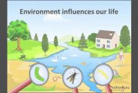 Amazing Science – What Are Biotic And Abiotic Components Of The Environment regarding Good quality Landscape Meaning In Hindi