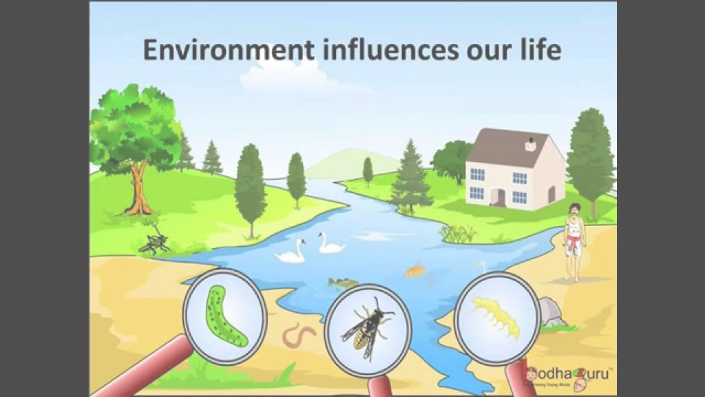 Amazing Science - What Are Biotic And Abiotic Components Of The Environment regarding Good quality Landscape Meaning In Hindi