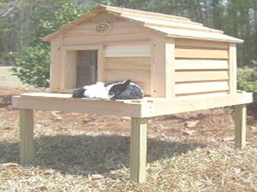 Epic Fancy Outdoor Cat House Plans Free 18 For Small Home Remodel Ideas within Small Cat House Plans Pictures