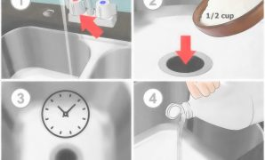 Glamorous 4 Ways To Unclog A Garbage Disposal regarding How To Unclog Kitchen Sink With Disposal