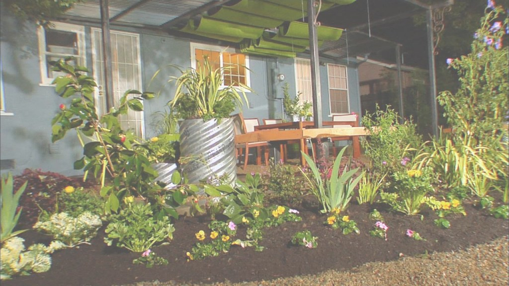 Modular Backyard Landscaping Ideas | Diy in How To Landscape Backyard